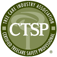 Anytown CTSP logo
