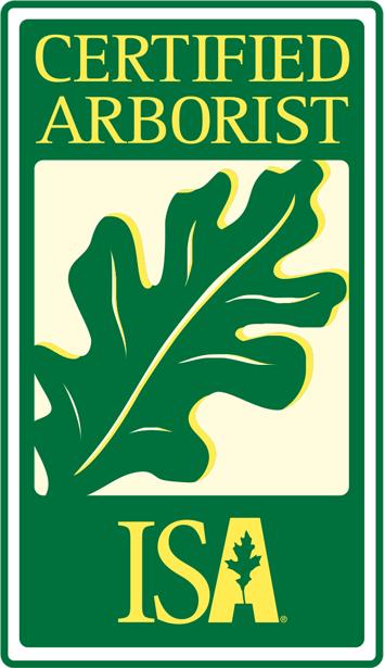 Any town ISA-Logo