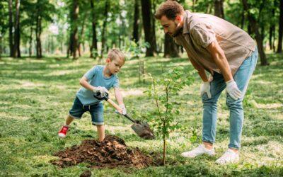 Greener Yard = Greener Earth: Earth-Friendly Landscaping and Gardening
