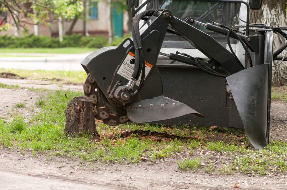 Local Stump Grinding Service
